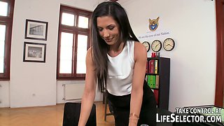 The Immigration Officer - LifeSelector