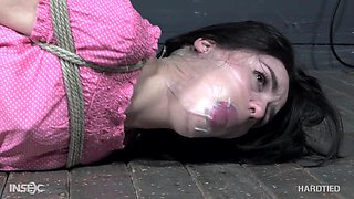 Brunette gets hard tied and forced fucked