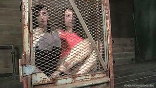 Two sex-slaves in the cage are waiting for punishment