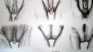 Kocalos - Erotic Art. Twenty kinds of pussy.