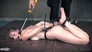 tied up ashley loves the cattle prod