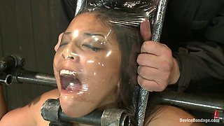 Adrianna Luna in She looks hotter in bondage - DeviceBondage