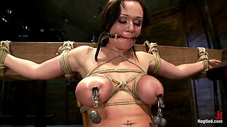 Big Titted 21yr Old In Her First Ever Hardcore Bondage Shoot Once Helpless We Abuse Those Tits. - HogTied